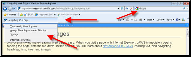 Internet Explorer 9 with JAWS